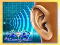 Odbiór szumów i dźwięków