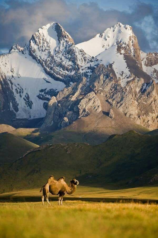 Down Round - Tien Shan Mountain Range, Kyrgyzstan