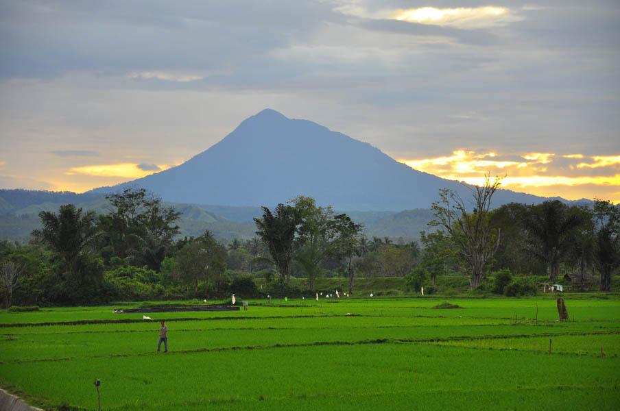 Gunung Seulah Agam - Janoopedia