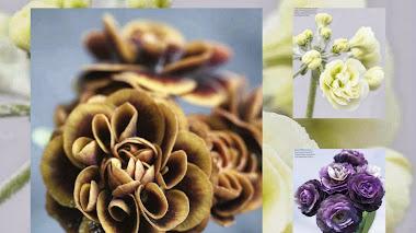 Auriculas de flor doble