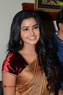 Actress Anupama Parameswaran Stills in Silk Saree with Shatamanam Bhavati Team at Sandhya Theater  0035.JPG