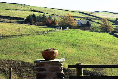 Photo of the view from the farm, showing green hills and dry stone walls.