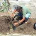 Prefeitura de Jaguarari inicia ação de plantio de plantas nativas da região na sede e zona rural do município