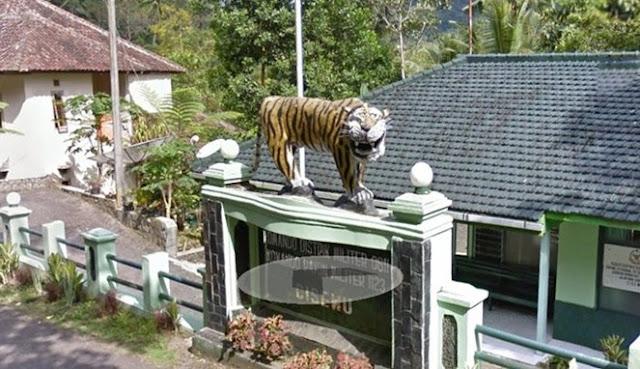 Kejadian Langka di Indonesia yang Hanya Bisa Dilihat di Goole Street View, Asli Nyeleneh Deh!