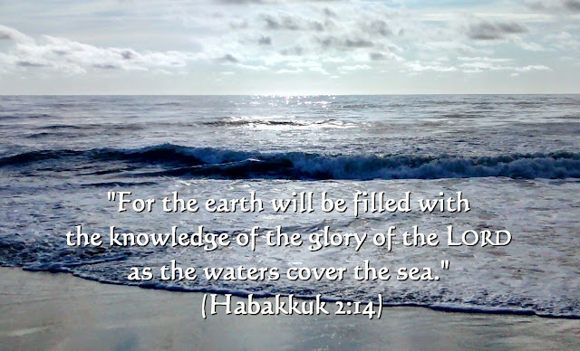 Image result for Habakkuk 2:14