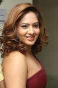 nikisha patel new sizzling photos gallery-thumbnail-18