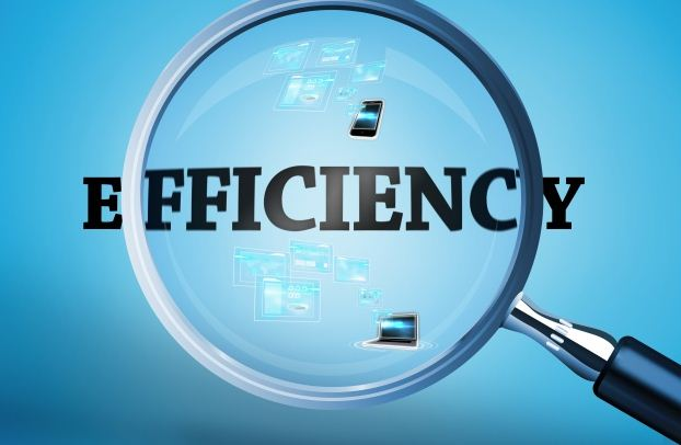 Supply Chain: Efficient or Flexible or Constructal?