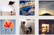 Websta instagram photo feed widget