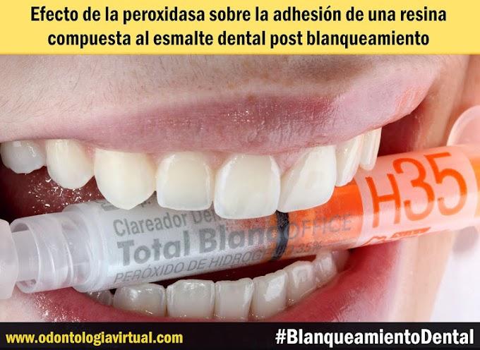 PDF: Efecto de la peroxidasa sobre la adhesión de una resina compuesta al esmalte dental post blanqueamiento