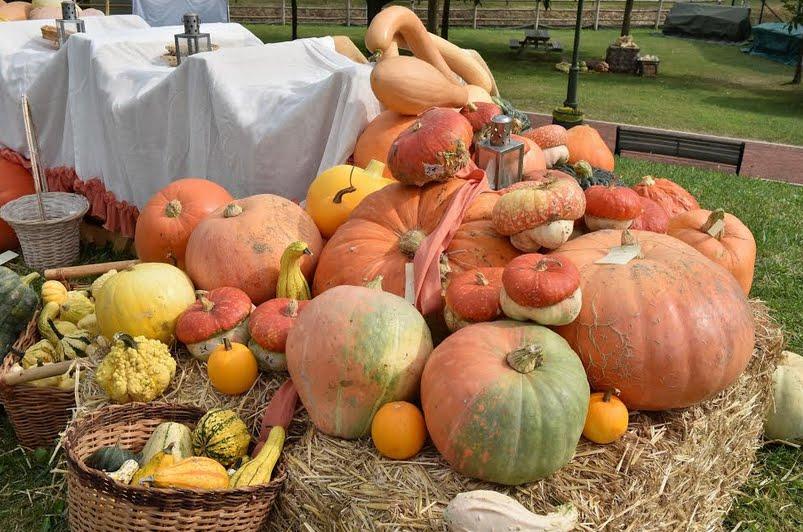 Festa della Zucca a Pastrengo Verona: quando e informazioni