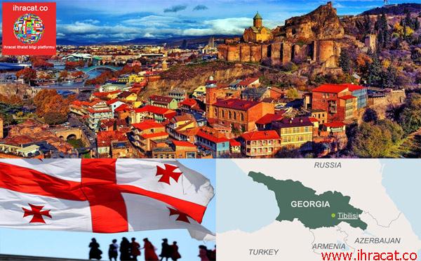 georgia import, georgia invest