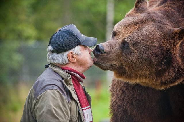 Суло Карьялайнен і його ведмідь