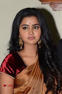 Actress Anupama Parameswaran Stills in Silk Saree with Shatamanam Bhavati Team at Sandhya Theater  0021.JPG