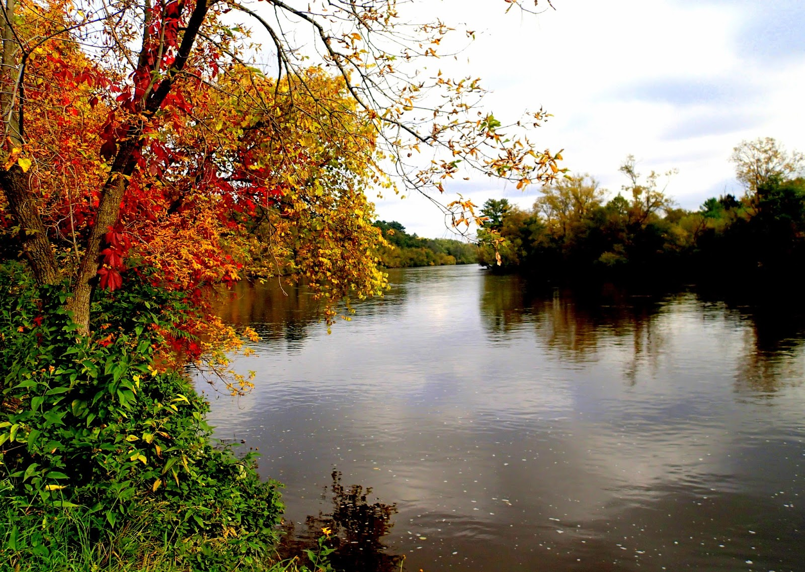 Red Cedar River ~ The stream of time wisconsin recreation