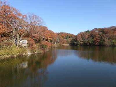 白旗池の紅葉