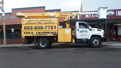 Urban Forest Tree Care Truck