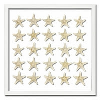 https://www.ceramicwalldecor.com/p/starfish-frame-only-wall-decor.html