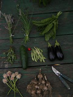 Eggplant, Kale & Garlic Pasta