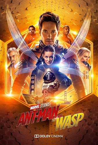 Ant-Man and the Wasp (BRRip 1080p Dual Latino / Ingles) (2018)