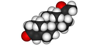 Kesan sampingan Hormon Progesteron