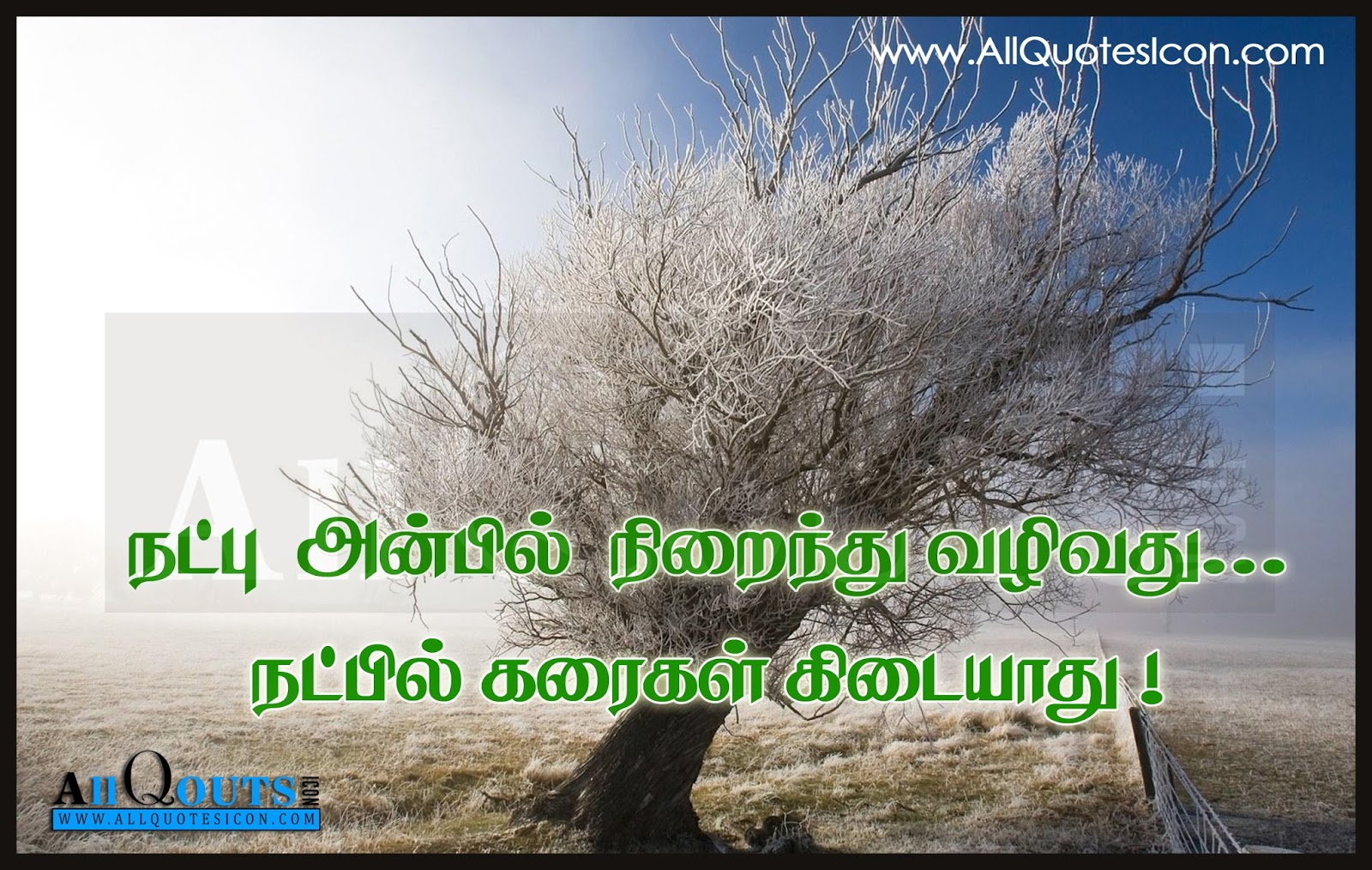Friendship Quotes And Feelings In Tamil Wwwallquotesiconcom