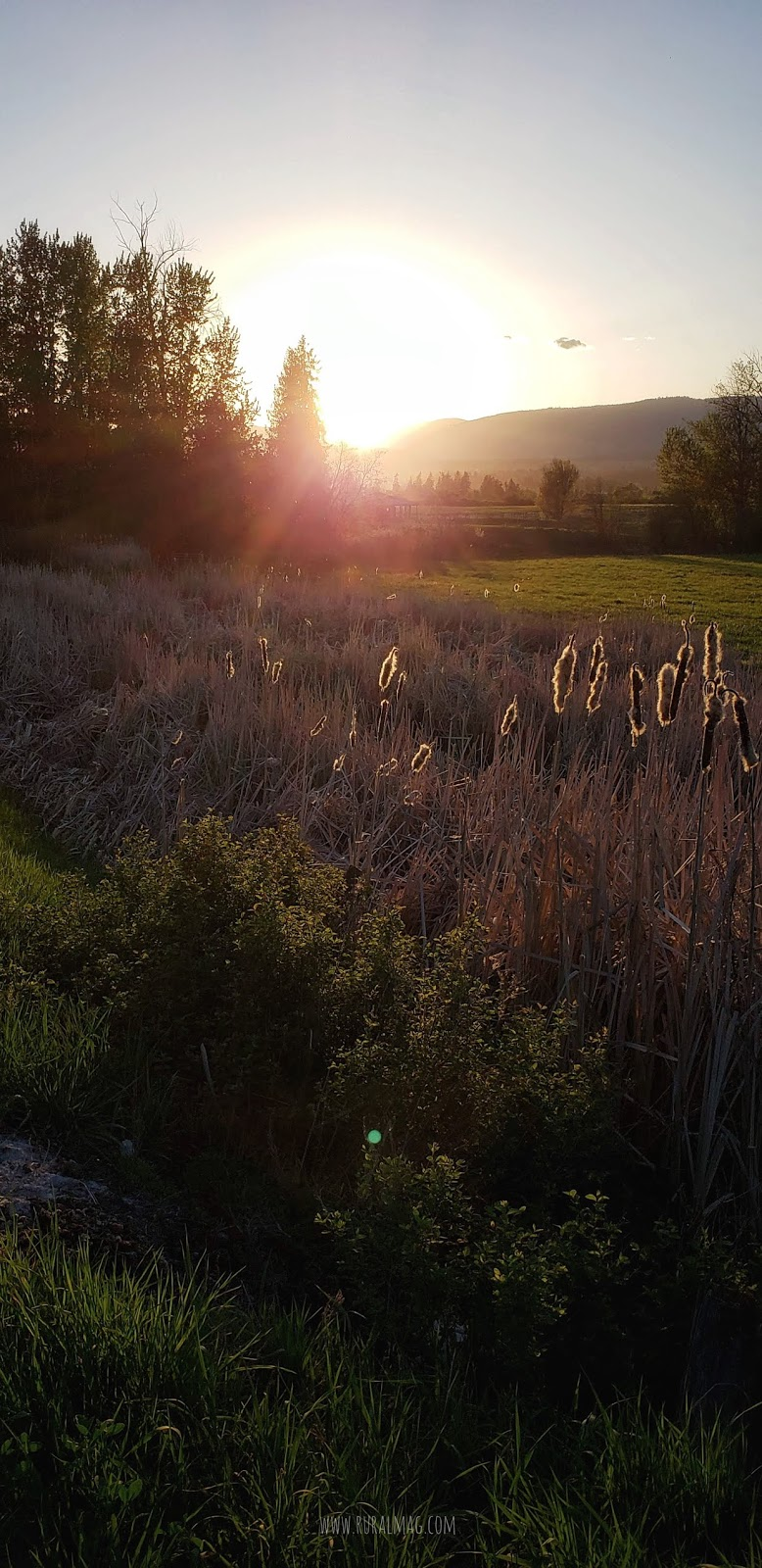 Sun setting over mountains and meadow in the Okanagan from www.ruralmag.com