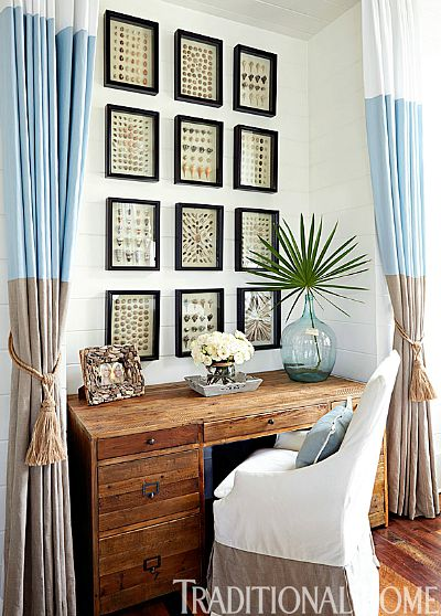 framed seashell gallery wall
