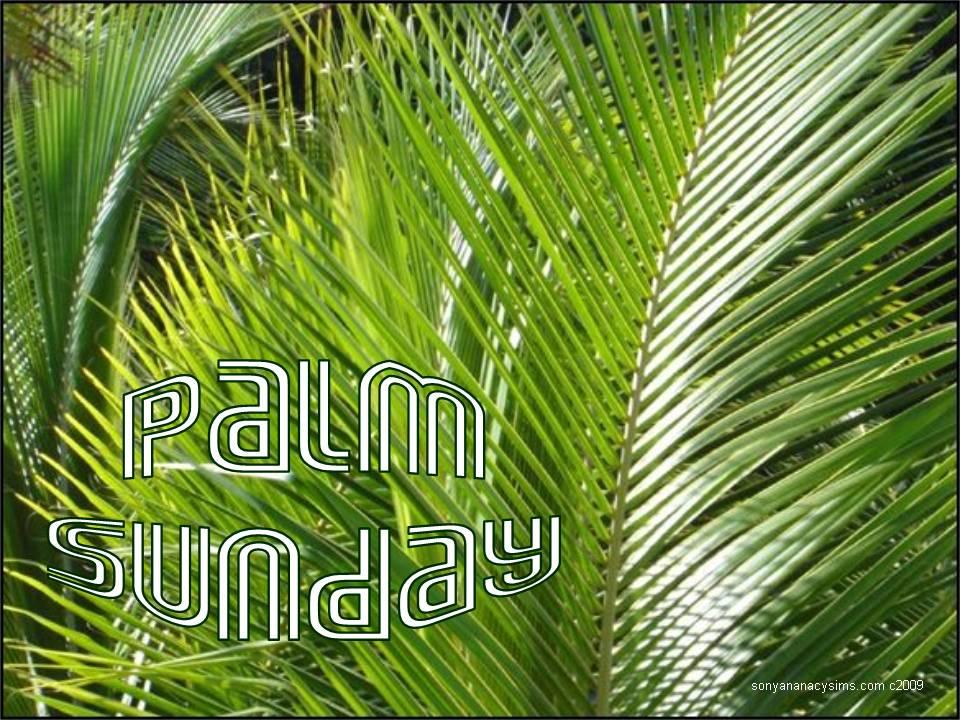 palm sunday - photo #46