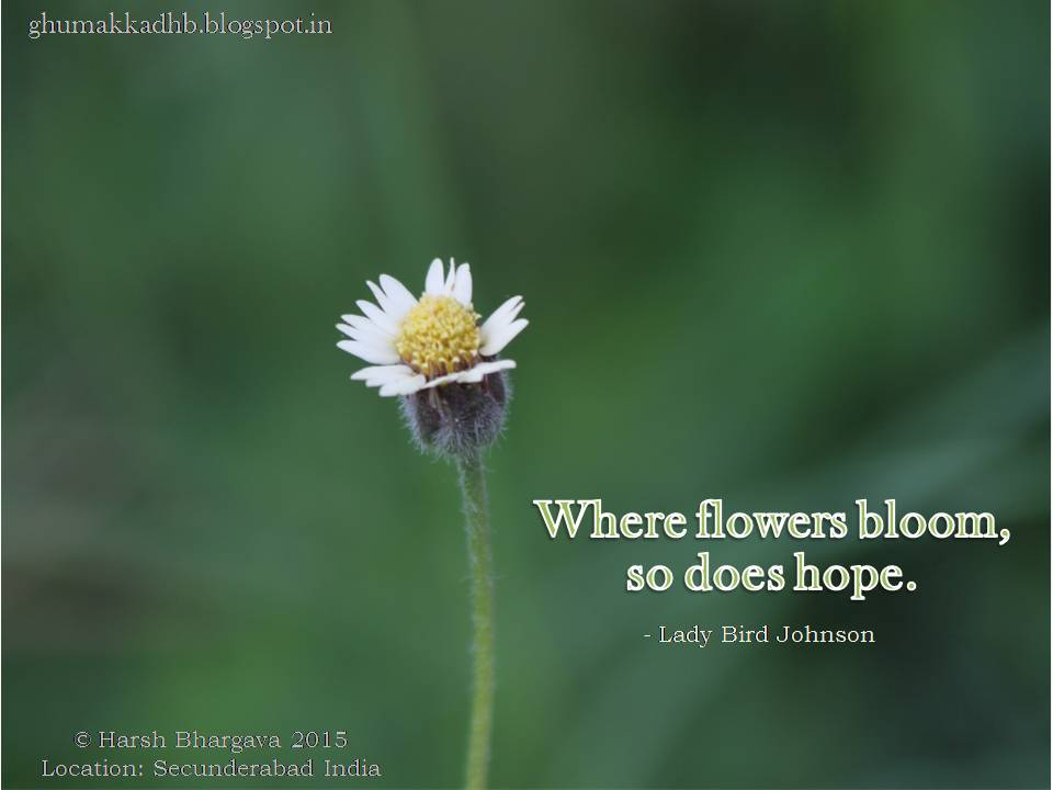 Ghumakkad Harsh  Where flowers bloom so does Hope 9992cf92790