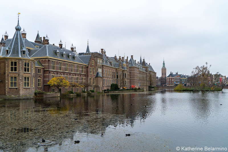 The Hague Hofvijver Netherlands Day Trips from Amsterdam or Rotterdam