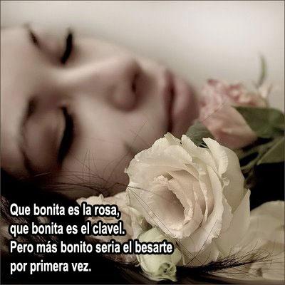 Frases De Amor Que Bonita Es La Rosa Que Bonita Es El
