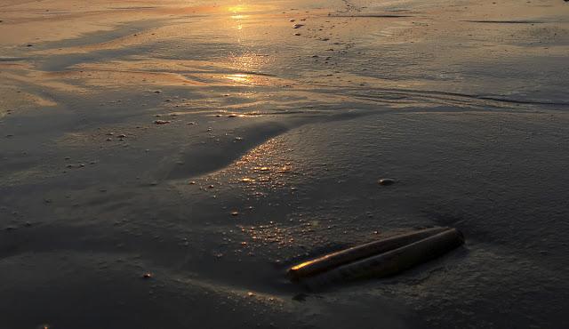 Langeoog, Insel, Ostfriesland, Urlaub am Meer, Urlaub in Deutschland