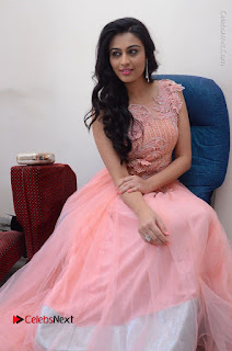 Actress Neha Hinge Stills in Pink Long Dress at Srivalli Teaser Launch  0133.JPG