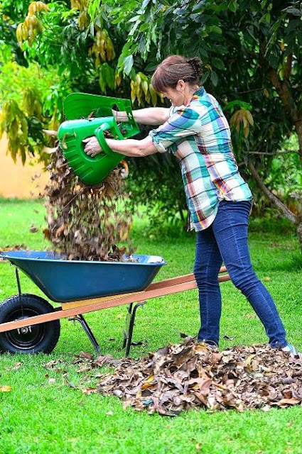 Yard Cleaning Tools and Gadgets (10) 2