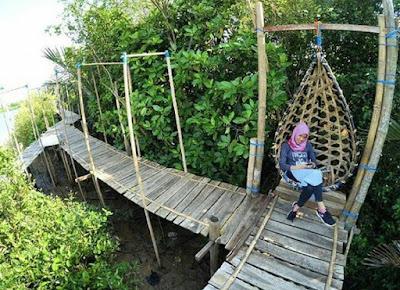 Hutan Mangrove Pasir Mendit