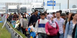 Арас Бахо призывает приезжать в Германию