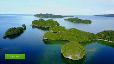 Aerial Foto Udara Kokas Pulau Ugar
