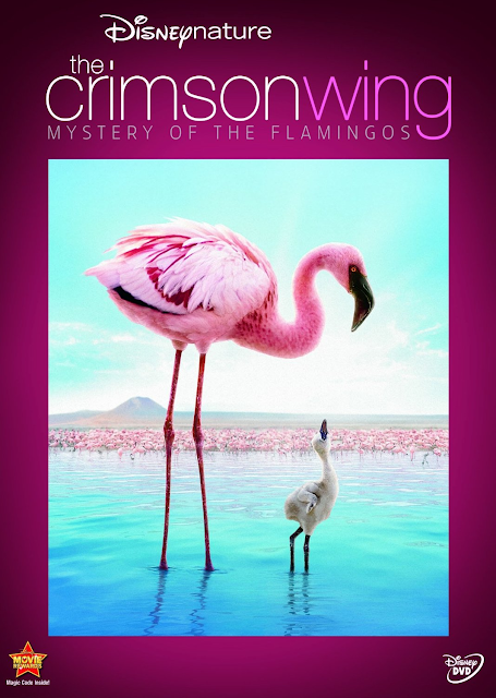 Disney Nature: The Crimson Wing – Mistery of Flamingos [Latino]