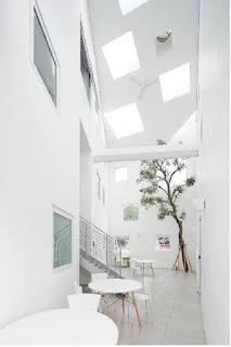 Cara Cerdas Mempercantik Desain Interior Rumah Minimalis Anda Dengan Tanaman.