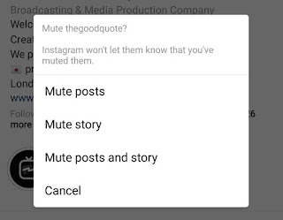 Mute posts on Instagram from particular user