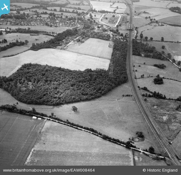 Photograph of Peplin's Wood, Brookmans Park, 1947
