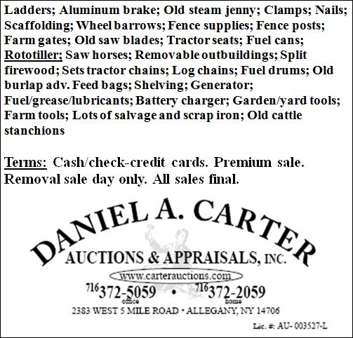 carterauctions.com
