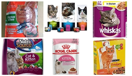 Daftar Harga Makanan Kucing Persia Terbaik Dan Terlengkap Yoadit Com