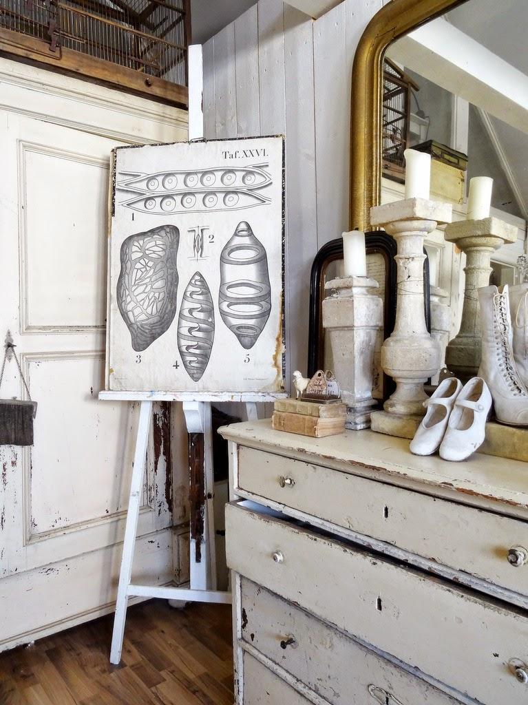 princessgreeneye wohlf hlen mit geschichte. Black Bedroom Furniture Sets. Home Design Ideas