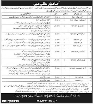 Pakistan Forest Institute (PFI) Peshawar Jobs 2019 | 35 Vacancies |