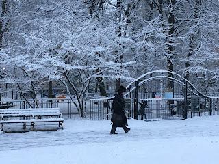 Brooklyn writer in Prospect Park