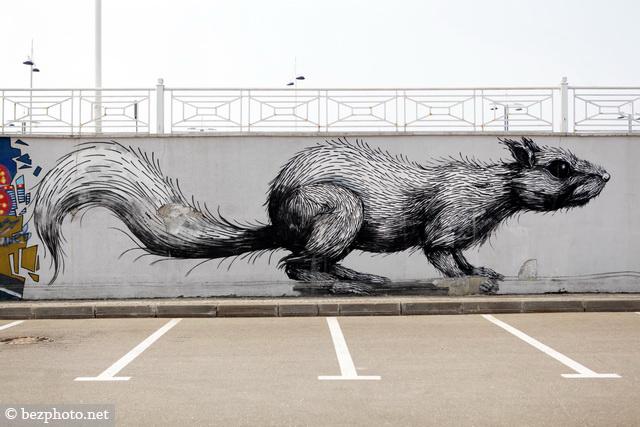 ROA graffiti