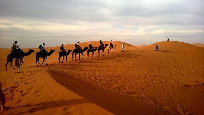 Rajasthan Desert