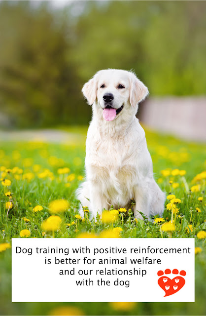Dog training with positive reinforcement is better for animal welfare and our relationship with the dog (poster)