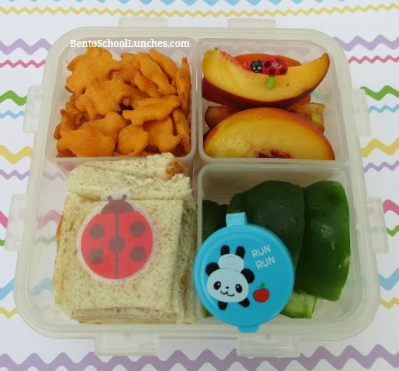 Fast and easy bento school lunch